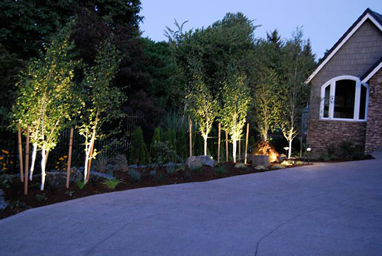 low voltage outdoor lighting installation