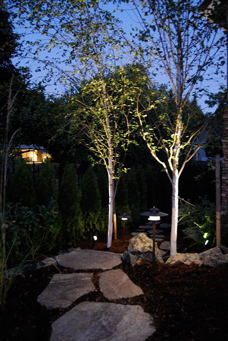 Low voltage outdoor lighting installation expert outdoor light installation aloadofball Image collections